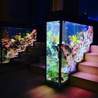 Awesome Aquarium Partition Ideas31