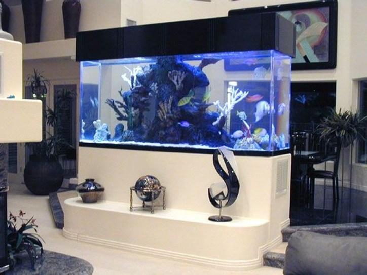 Awesome Aquarium Partition Ideas35