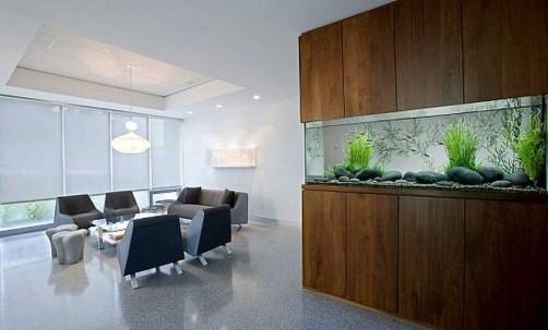 Awesome Aquarium Partition Ideas39