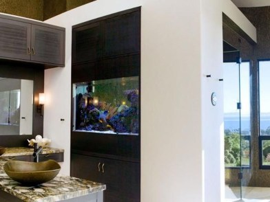 Awesome Aquarium Partition Ideas43