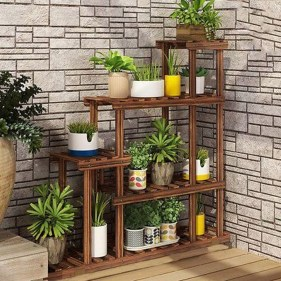 Lovely Display Indoor Plants21
