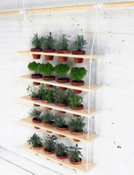 Simple Indoor Herb Garden Ideas For More Healthy Home Air24