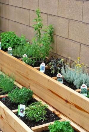 Simple Indoor Herb Garden Ideas For More Healthy Home Air37