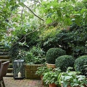 Beautiful Shady Gardens Design Ideas01