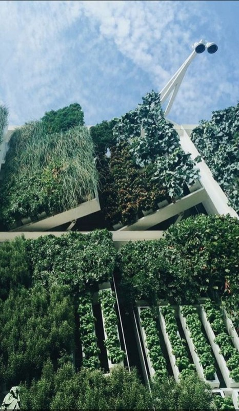 Best Vertical Farming Architecture Design Inspirations24