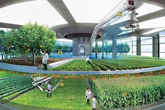 Best Vertical Farming Architecture Design Inspirations27