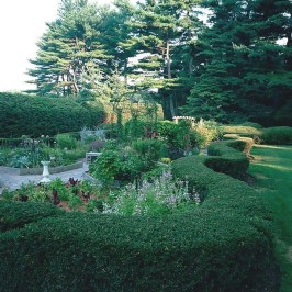 Top Gorgeous Landscape Plan17