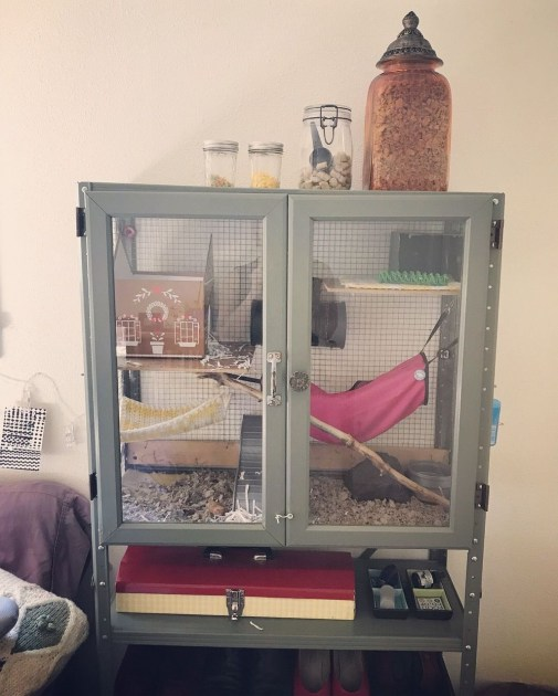Unique Diy Pet Cage Design Ideas You Have To Copy47
