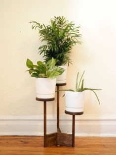 Awesome Indoor Plant Decoration Ideas To Make Natural Comfort In Your Home05
