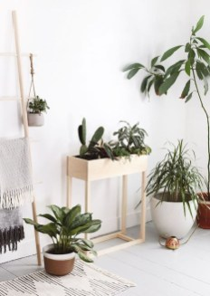 Awesome Indoor Plant Decoration Ideas To Make Natural Comfort In Your Home21