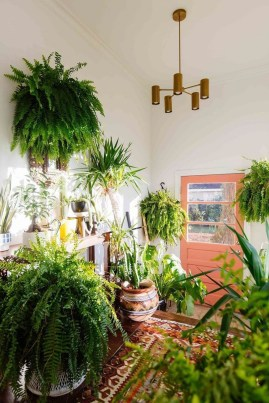 Awesome Indoor Plant Decoration Ideas To Make Natural Comfort In Your Home35