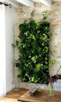 Awesome Indoor Plant Decoration Ideas To Make Natural Comfort In Your Home37