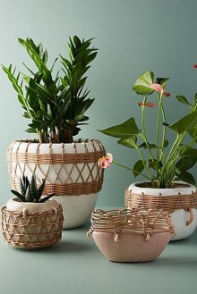 Awesome Indoor Plant Decoration Ideas To Make Natural Comfort In Your Home41