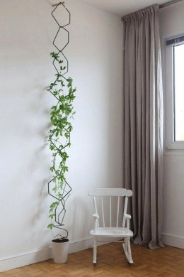 Awesome Indoor Plant Decoration Ideas To Make Natural Comfort In Your Home45