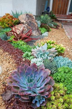Gorgeous Succulent Garden Ideas For Your Backyard25