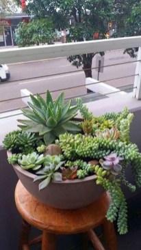 Gorgeous Succulent Garden Ideas For Your Backyard32