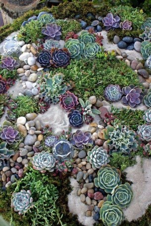 Gorgeous Succulent Garden Ideas For Your Backyard33