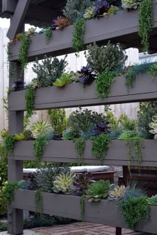 Gorgeous Succulent Garden Ideas For Your Backyard38