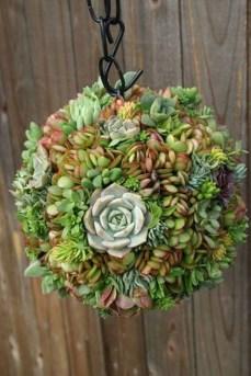 Gorgeous Succulent Garden Ideas For Your Backyard49