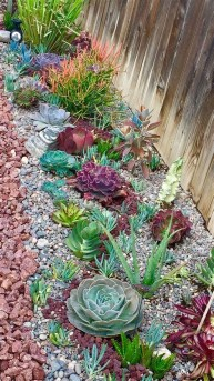 Gorgeous Succulent Garden Ideas For Your Backyard50