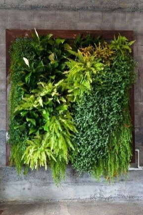 Succulents Living Walls Vertical Gardens Ideas06