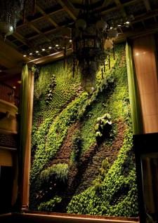 Succulents Living Walls Vertical Gardens Ideas10
