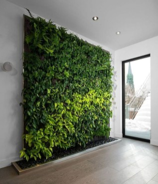 Succulents Living Walls Vertical Gardens Ideas15