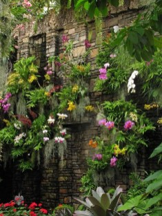 Succulents Living Walls Vertical Gardens Ideas28