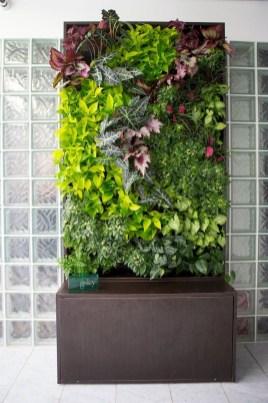 Succulents Living Walls Vertical Gardens Ideas35