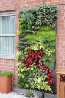 Succulents Living Walls Vertical Gardens Ideas37