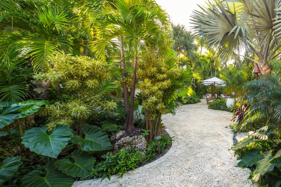 Tropical Backyard Landscaping Ideas, Making Backyard Great ... on Tropical Backyards  id=70073
