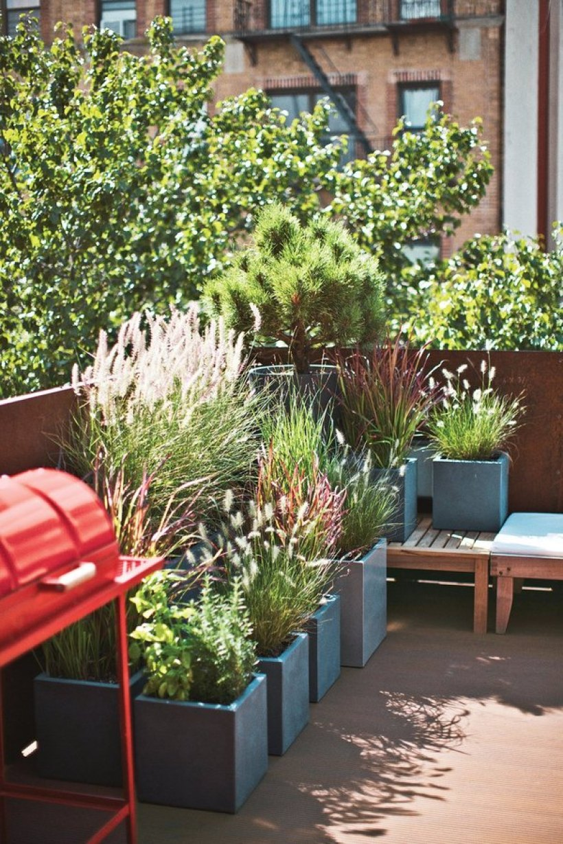 Backyard Landscaping with a Container Garden