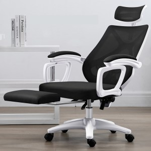 The Ergonomic Chair- ErgoLuxe Plus (Black/White)