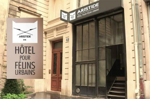 aristide-hotel-pour-chats-paris
