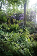 La vallée fleurie.
