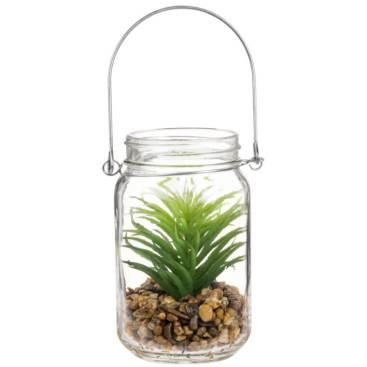 1. Plante lanterne Maison du Monde.