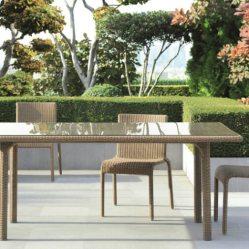 1. Table, Tectona