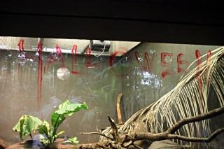 Zoo de Vincennes 22