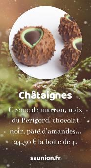 https://www.saunion.fr/boutique/chocolats/chataigne/