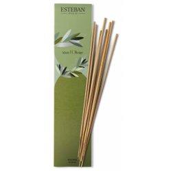 5. Encens Sous L'olivier, Esteban