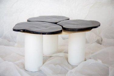 Table Epinea, Atelier Zû