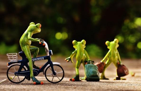Ein Frosch auf einem Fahrrad schaut zwei Fröschen mit Koffern hinterher
