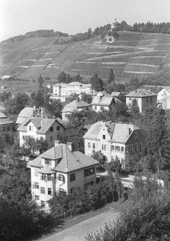 Pogled na Mladinsko ob stadionu leta 1961