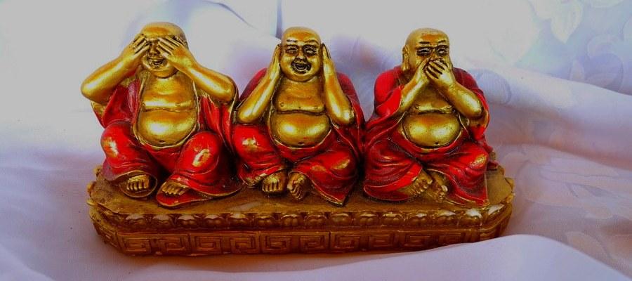 buddha homöopathie
