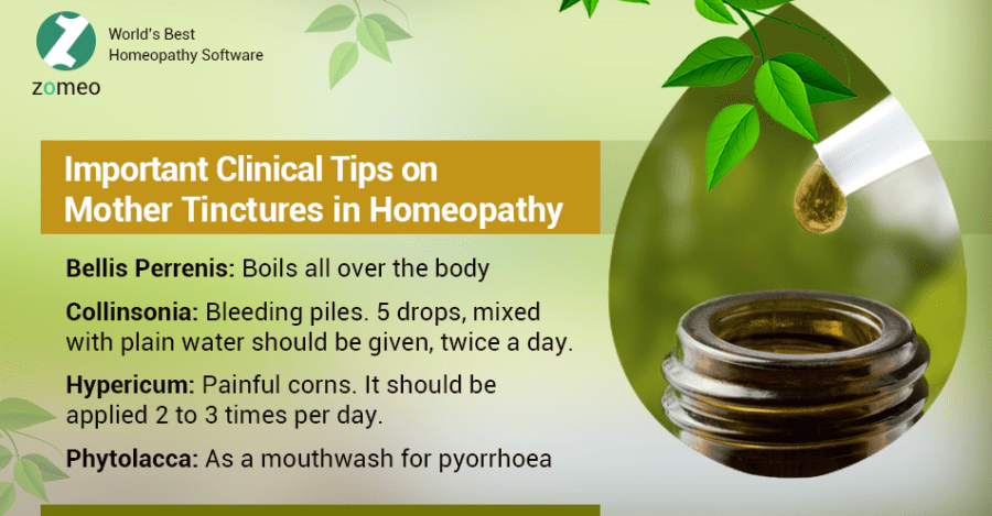 Mother Tinctures in Homeopathy