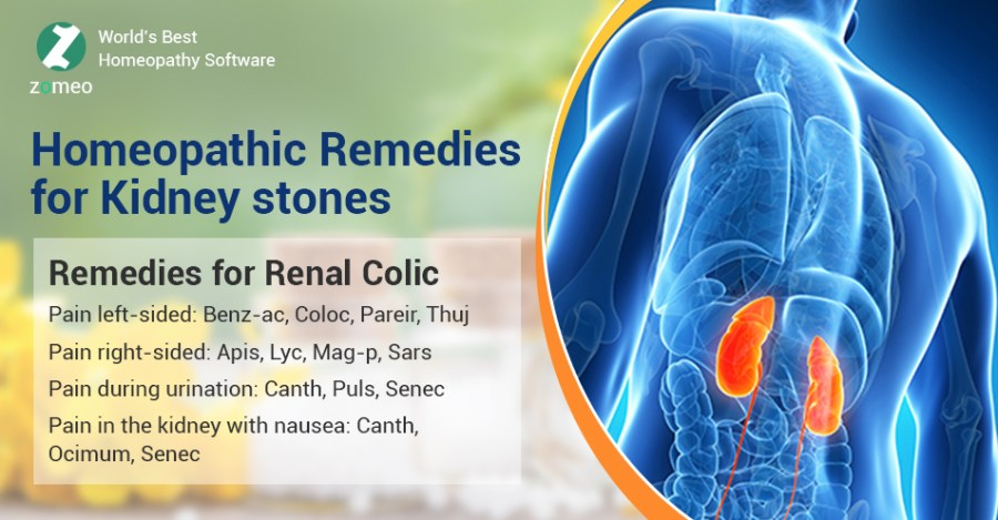 Homeopathic Remedies For Kidney Stones Hompath