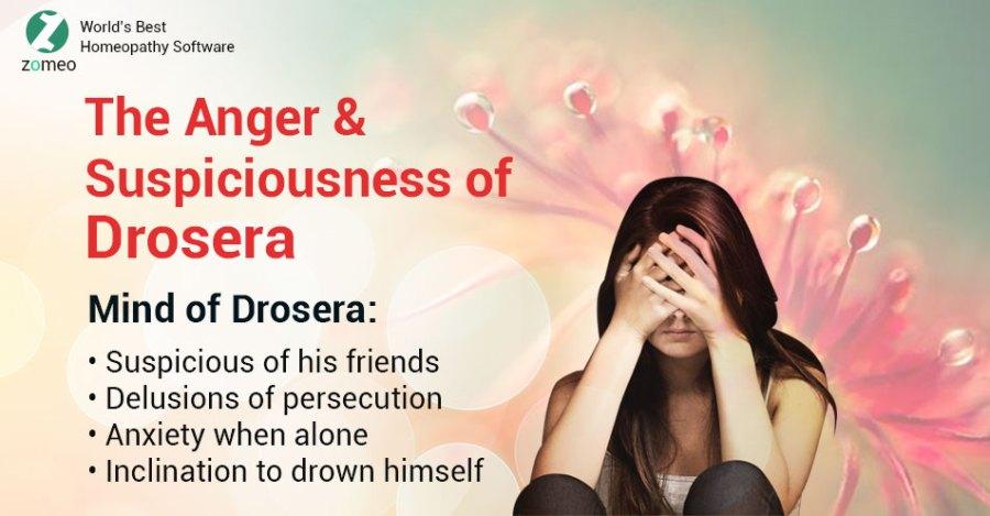 Mind of Drosera