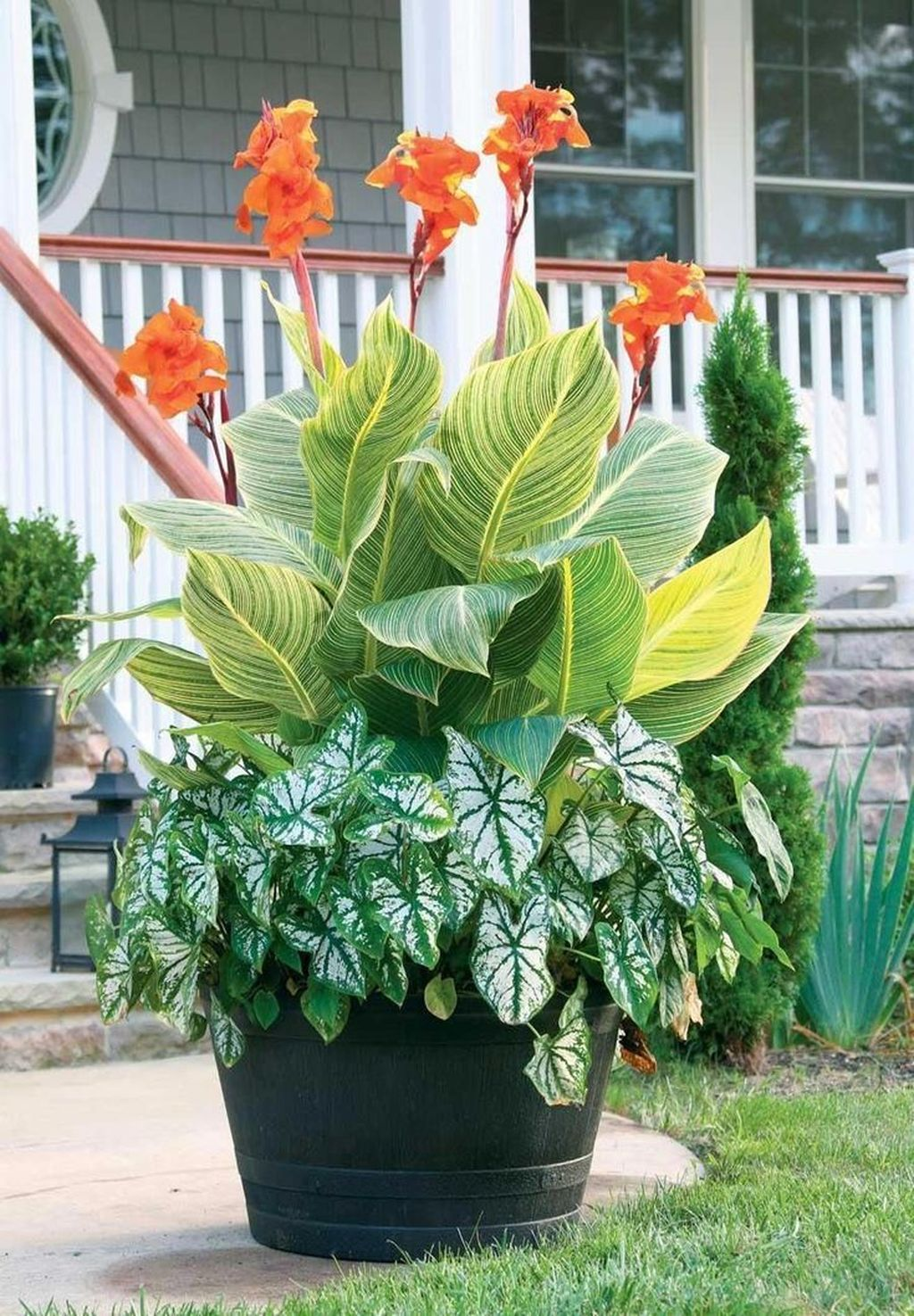 Lovely Combination Planting Container Gardening Ideas 14