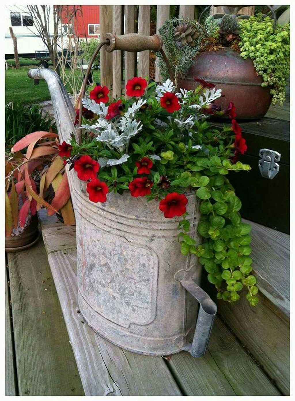 Lovely Combination Planting Container Gardening Ideas 18