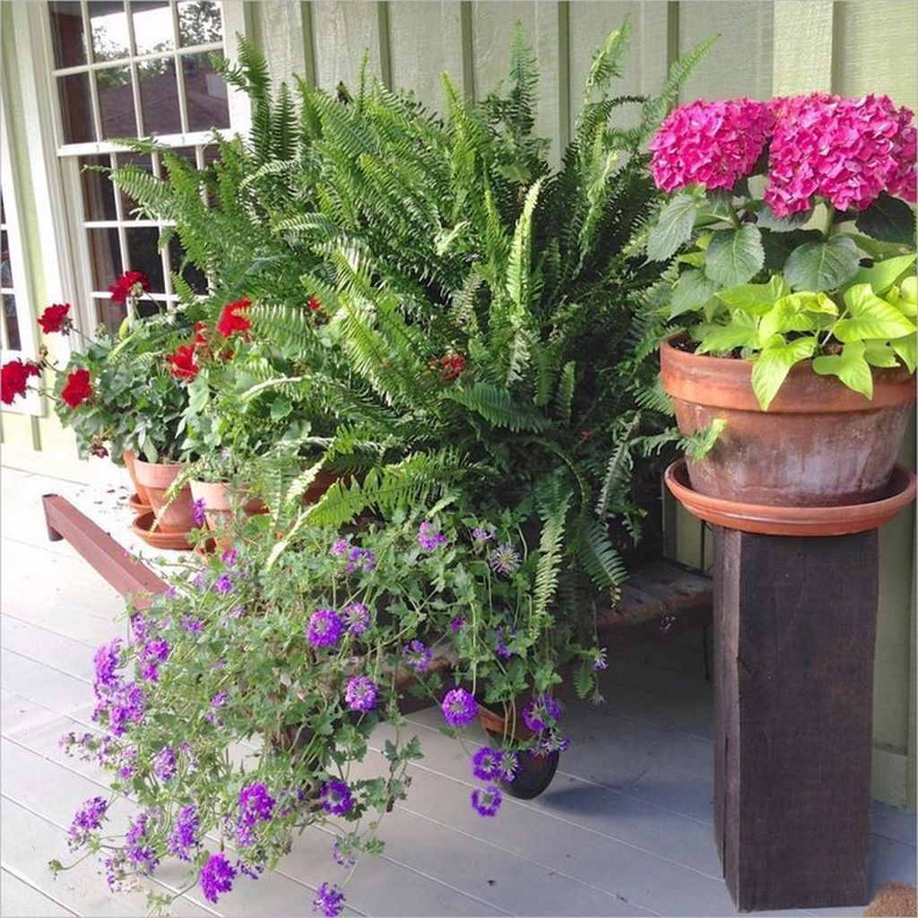 Lovely Combination Planting Container Gardening Ideas 25